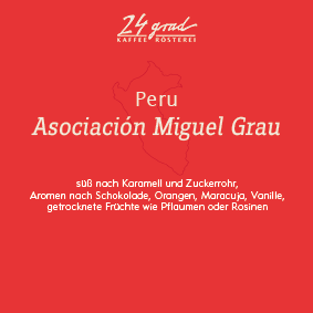 peru_asociacion-miguel-grau_druck