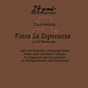Guatemala_Finca La Esperanza_web