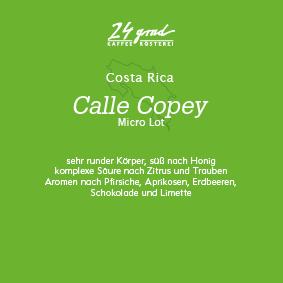 Costa Rica_Calle Copey_web