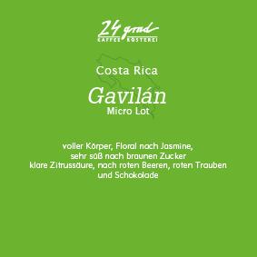 Costa Rica_Gavilan_web