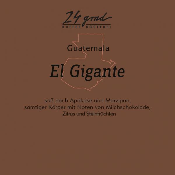 Guatemala_ElGigante_web