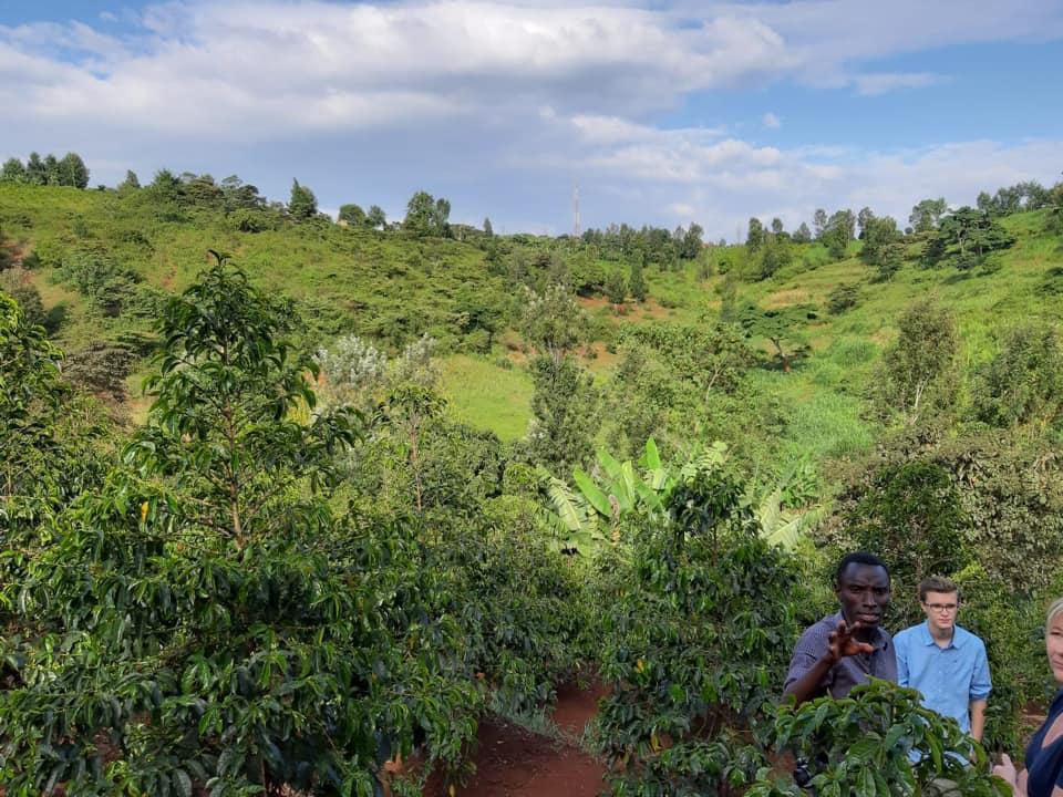 Kaffeereise Kenia