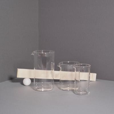 Bodum Spare Beaker Ersatzglas